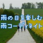 rainy-weather-358112_1280
