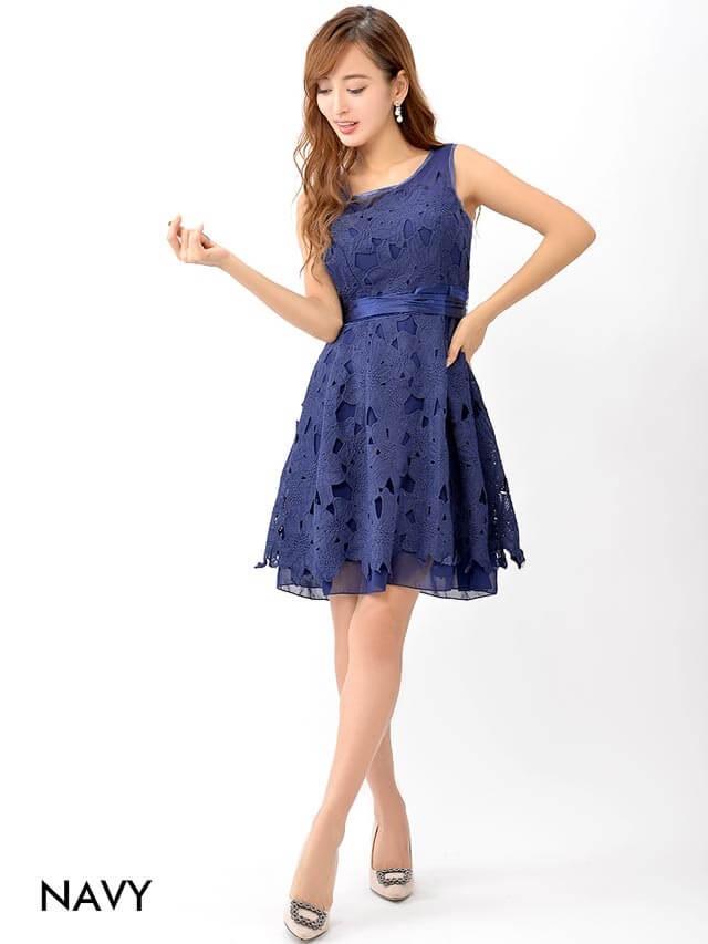シアーネック大花柄刺繍レースAラインミニドレス